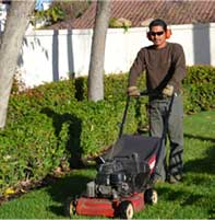 Landscaper working on Residential Landscaping in San Diego